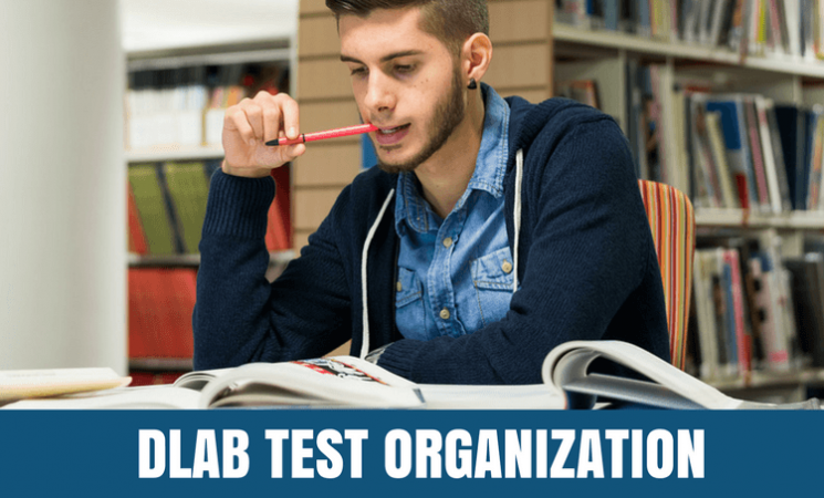 How is the DLAB Test Organized