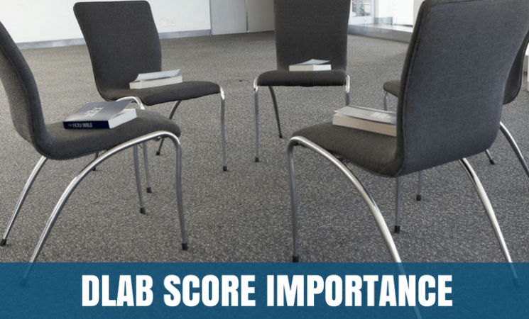 How Important are Your DLAB Scores
