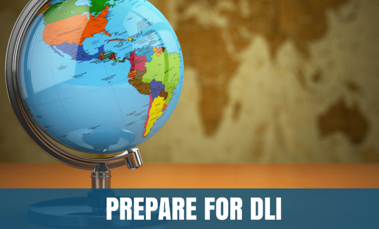 How to prepare for DLI