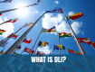 What is the Defense Language Institute (DLI)?