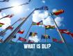 What is the Defense Language Institute (DLI)?